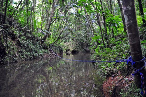 Der mühsame Weg zu den Ngardmau Wasserfällen