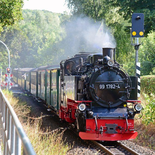 Der Rasender Roland auf Rügen