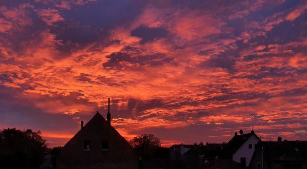 Sonnenaufgang in Hochheim