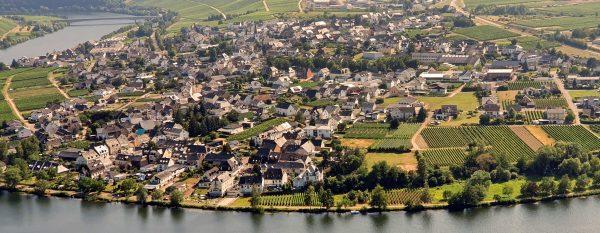 Mosel-Panoramablick auf Piesport und Umgebung