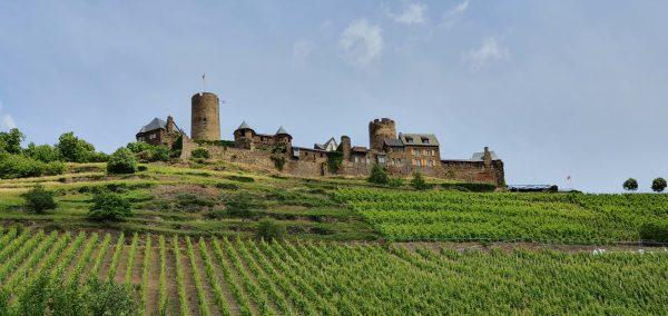 Die Ruine der Burg Thurant mit einem Hang zum Alkohol in Alken