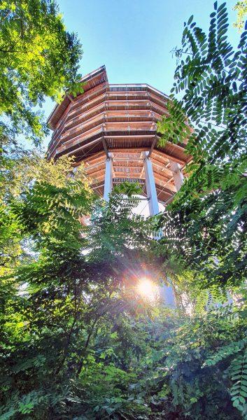 Der Aussichtsturm vom Baumwipfel-Pfad der Saarschleife