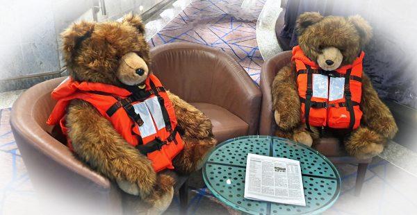 Bärenstarke Mitreisende auf der MS Seabourn Sojourn