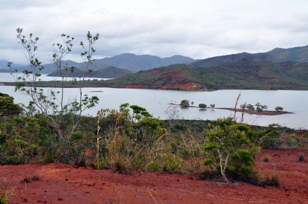 Im Blue River National Park, Neu Kaledonien