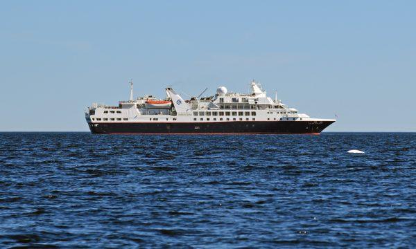 Die MS Silver Explorer und ein Beluga Wal