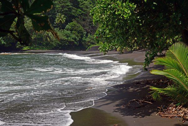 Ein Strand im Norden von Tahiti