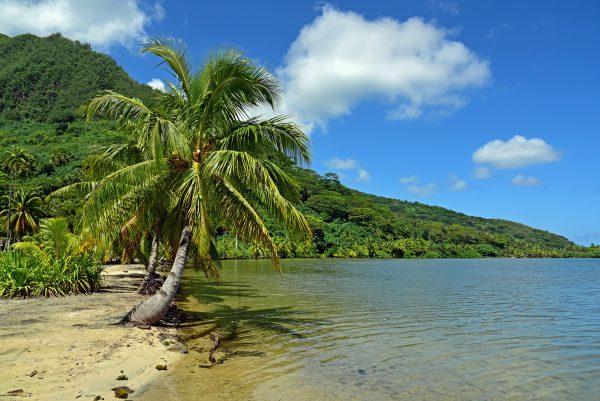 Ein Strand in Huahine