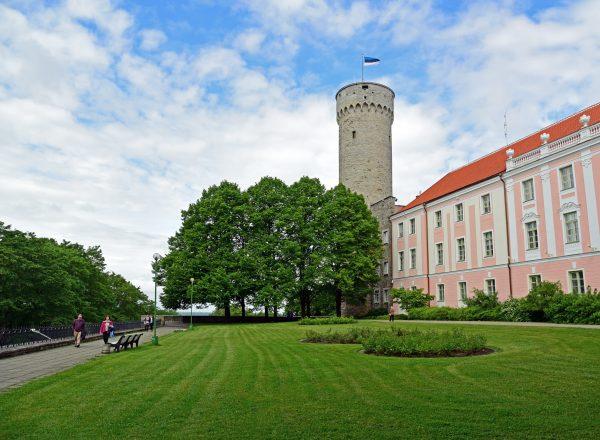 Turm Pikk Hermann in Tallinn / Estland