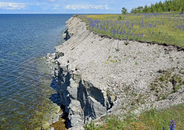 Panga Klippen/ Saaremaa / Estland