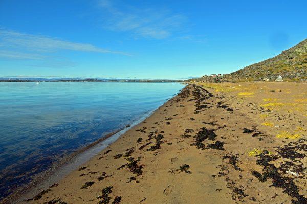 Von Iqaluit nach Apex