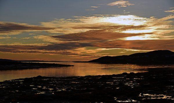 Guten Morgen Cape Dorset