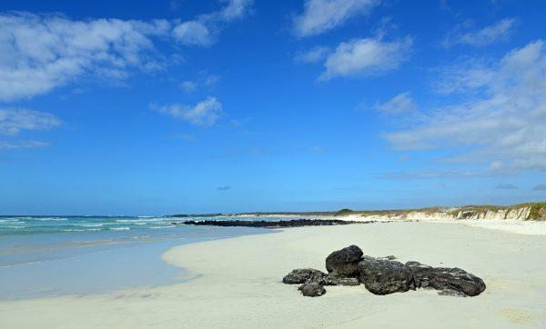 Die traumhafte Tortuga Bay