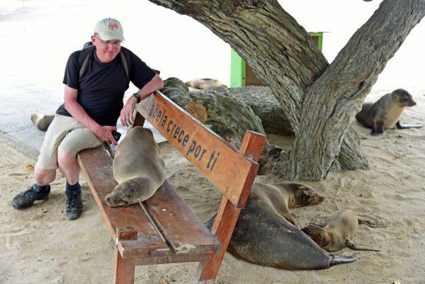 Zinni und seine Seehunde