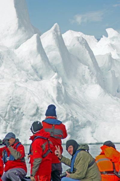 Zinni in Grönland