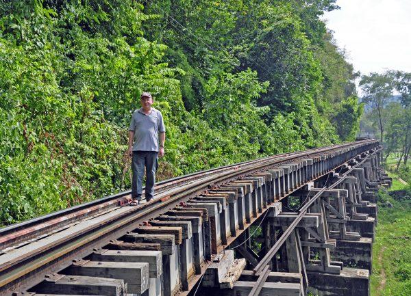 Zinni auf dem Gleis
