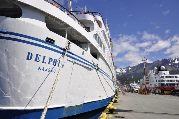 Guten Morgen Delphin (in Ushuaia)
