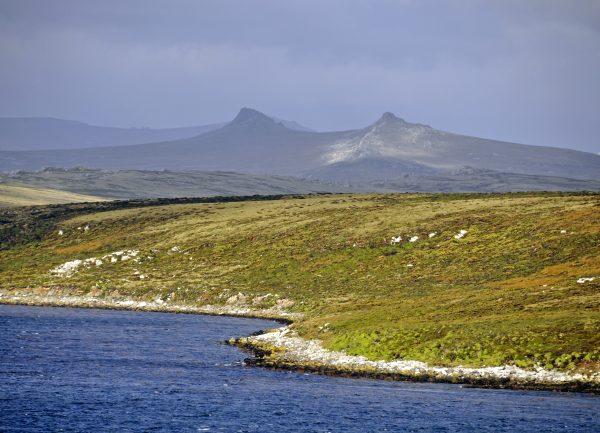 Ankunft in Falkland
