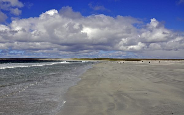 Die Lagoon Bluff Cove auf Falkland
