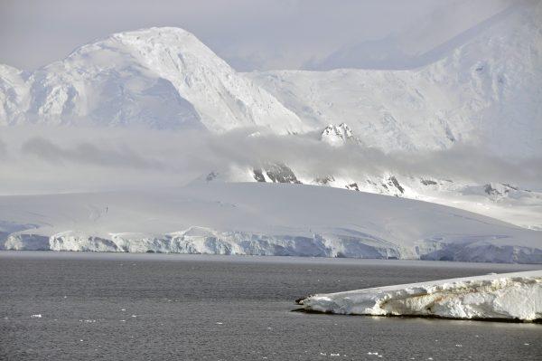 Palmer Archipel / Antarktis
