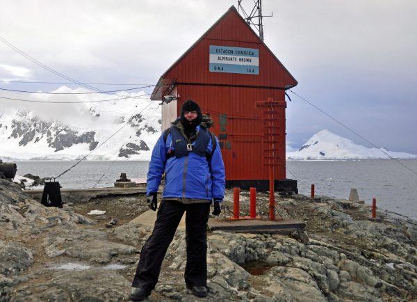 Zinni auf dem antarktischen Festland