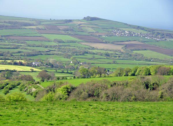 Ländliches Dorset
