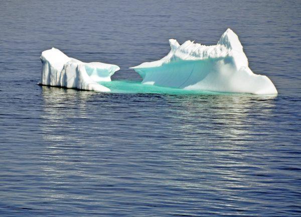 Ein Eisberg im Hamilton Inlet