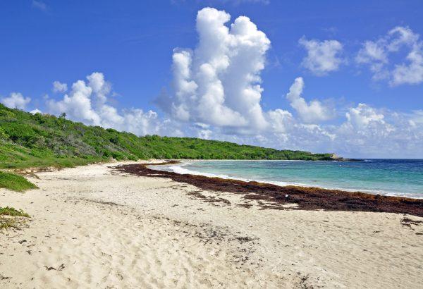 Die Windward Beach in Antigua