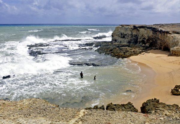 Ein Strand im Norden von Barbados