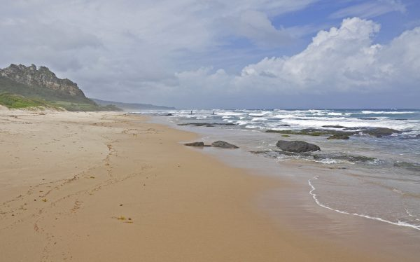 Ein Strand in Barbados