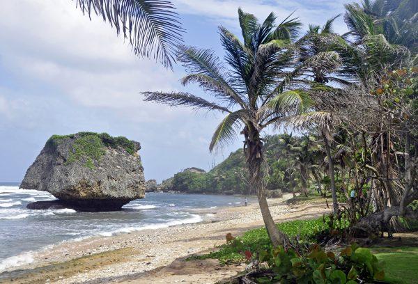 Bathsheba Beach