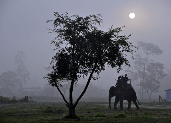 Im Chitwan Nationalpark