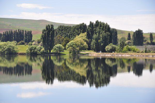 Am Meadowbank Lake