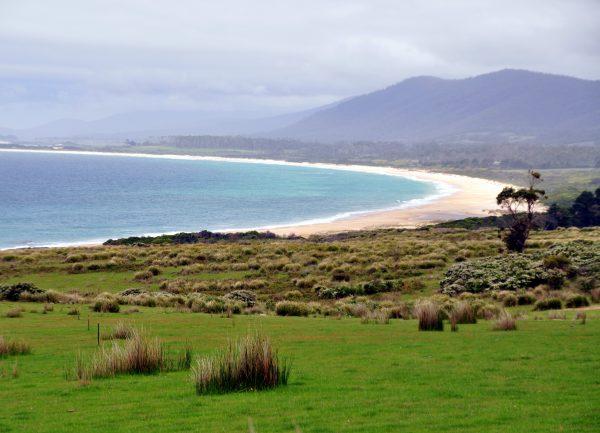 Unterwegs in Tasmanien