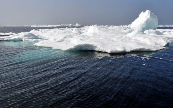 Eisberg-Watching in Grönland