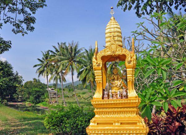 Im Nationalpark Khao Yai