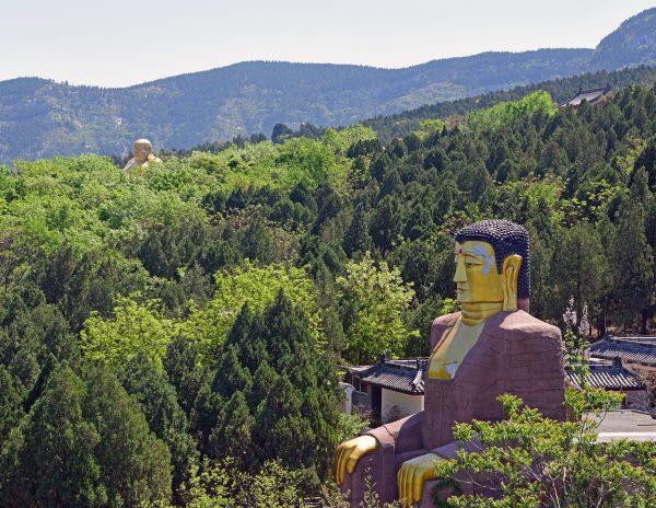 Blick auf den Thousand Buddha Mountain Park / Jinan