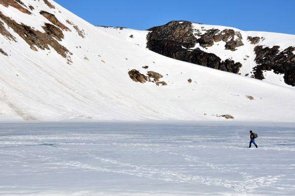 Die Walrusbay nahe Ittoqqortoormiit