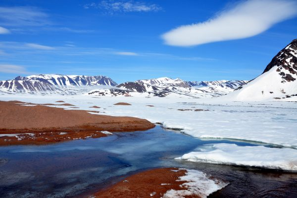 Die 'Arctic Riviera' nahe Ittoqqortoormiit