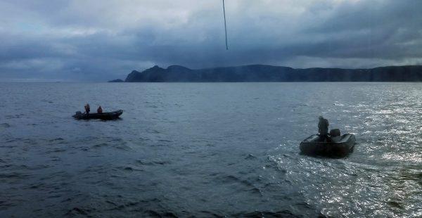 Zodiac Tour in Gjesværstappan Islands, Norwegen