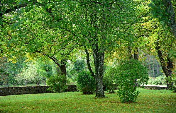 Der Park der Kirche von Gammelgarn, Gotland