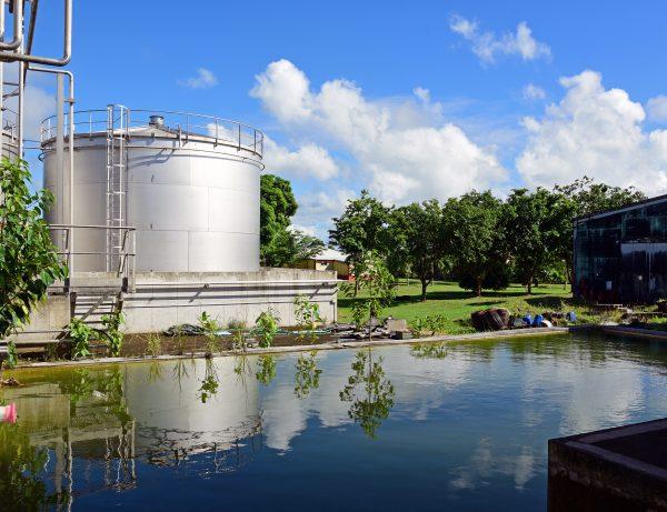 Die Rumfabrik Damoiseau in Guadeloupe