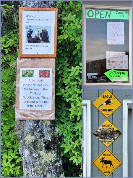 'Warnung vor dem Bär' in Haines
