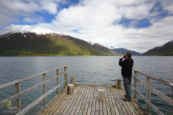 Zinni beim Fotografieren, mit freundlicher Genehmigung von 'Enjoy the Arctic'