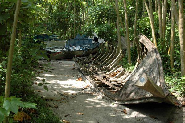 Tsunami Schaden