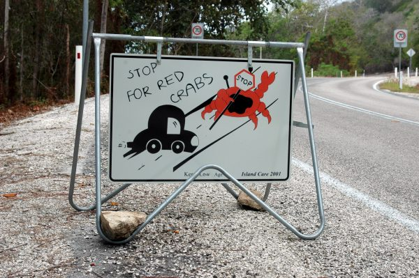 Stoppen für die Krabben