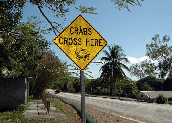 Warnung vor den Krabben