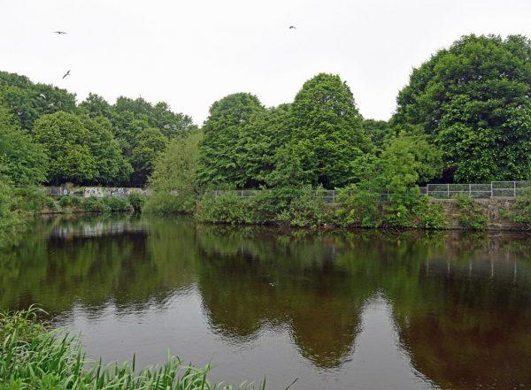 Water of Leith Walkway, Leith