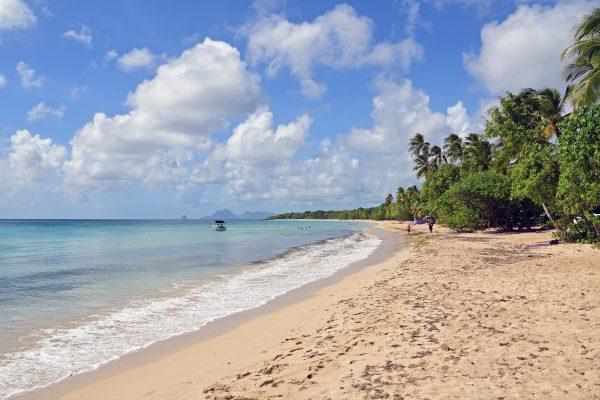 Strand bei Sainte-Anne / Martinique