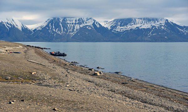 Der Strand von Bamsebu, Spitzbergen