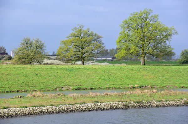 Unterwegs auf der Oder